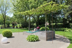 Garten Janssen Betriebshof Ramsloh Plantanen Liege