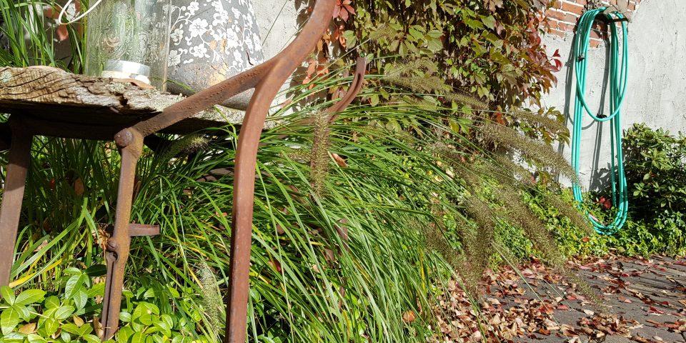 Garten Janssen Garten und Landschaftsbau 26683 Saterland Schwimmteich Naturpool Pool Whirlpool Outdoorküche Aussendusche Naturstein Privatgarten Terrassen und Sitzplätze Zuhause Lieblingsplätze Gartengestaltung Gartenplanung Bepflanzungsplanung Gartenkonzept Landschaftsbau Garten und Landschaftsbauverband Dachterrasse Augala